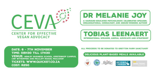 ceva-workshops-cape-town